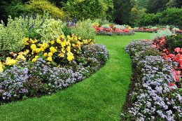 Bloem En Tuin : Bloementuin vaste planten ontwerp en tips!