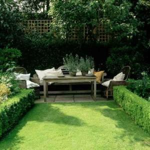 gras in tuin