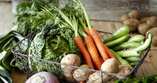 voedzame groenten in je tuin